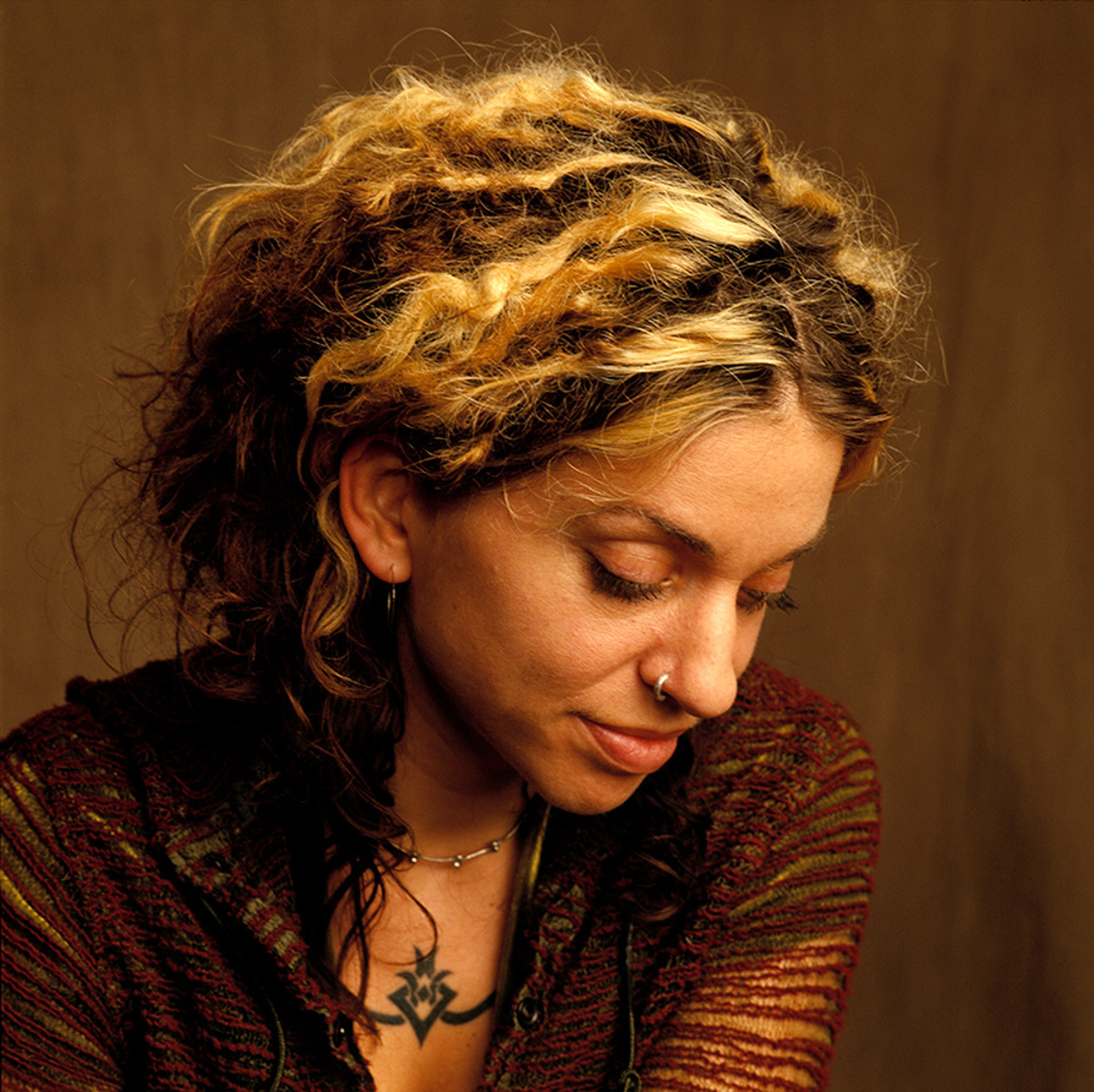 Ani DiFranco and Rain On The Roof  The Memory Of Trees